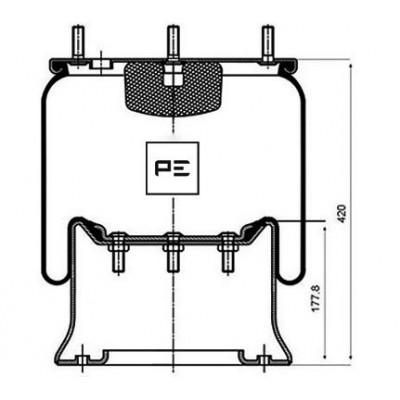 PERNA DE AER COMPLET DAF CPL. (1T19E2)